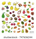 exotic tropical fruits hand... | Shutterstock . vector #747636244