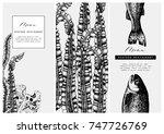 hand drawn fish illustration.... | Shutterstock .eps vector #747726769