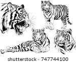 set of vector drawings on the... | Shutterstock .eps vector #747744100