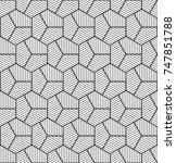 vector seamless pattern. modern ... | Shutterstock .eps vector #747851788