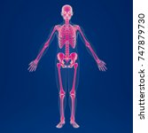 3d rendering   scan of an human ... | Shutterstock . vector #747879730