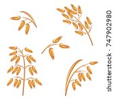 oats collection set. vector | Shutterstock .eps vector #747902980