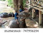chiangmai  thailand   october ... | Shutterstock . vector #747956254