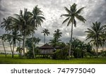 a house in paddy field. the... | Shutterstock . vector #747975040
