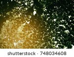 Small photo of Leaves Background with Light Leaks.