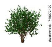 3d rendering of a green... | Shutterstock . vector #748072420