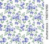 floral seamless pattern.... | Shutterstock .eps vector #748076980
