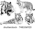 set of vector drawings on the... | Shutterstock .eps vector #748106920