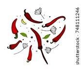 vector kitchen pepper flavor... | Shutterstock .eps vector #748111246