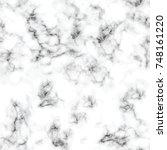 vector marble texture design... | Shutterstock .eps vector #748161220
