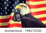bald eagle holds a dog tags in... | Shutterstock . vector #748172230