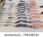 Small photo of mackerel Snapper Ruby Fish