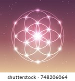 vector glowing flower of life... | Shutterstock .eps vector #748206064