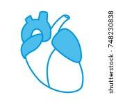 human heart symbol | Shutterstock .eps vector #748230838