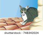 cat on roof | Shutterstock .eps vector #748342024