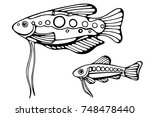 big fish and a small one with a ... | Shutterstock .eps vector #748478440
