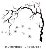 hand drawn cherry branches with ... | Shutterstock .eps vector #748487854