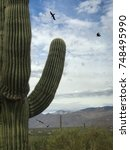 Small photo of Nature Wildlife - Desert Landscape Of Saguaro Cactus, Background Of Black Crows fling, and Mountains.