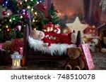 portrait of newborn baby in... | Shutterstock . vector #748510078