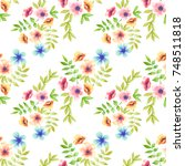 floral seamless pattern with...   Shutterstock . vector #748511818