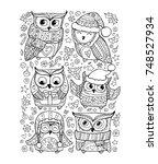 cute owls. christmas set... | Shutterstock .eps vector #748527934