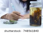 education biotechnology and... | Shutterstock . vector #748561840