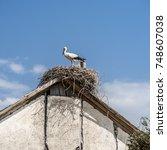 Small photo of Southern Georgia, Samtskhe-Javakheti. The villages bordering with Armenia abound with storks.