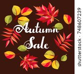 autumn sale background.... | Shutterstock .eps vector #748607239