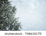 christmas tree pine or fir with ... | Shutterstock . vector #748610170