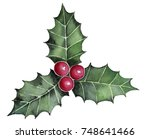 holly berry leaves detail... | Shutterstock . vector #748641466