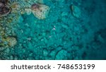 martinique island in the... | Shutterstock . vector #748653199