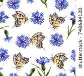 watercolor seamless pattern of... | Shutterstock . vector #748684120
