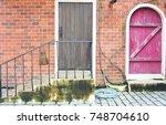 old door of brick building. | Shutterstock . vector #748704610