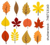 autumns leaves collection.... | Shutterstock .eps vector #748713160