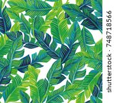 tropical palm leaves seamless... | Shutterstock .eps vector #748718566