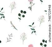 little flower and leaves gentle ... | Shutterstock . vector #748723948