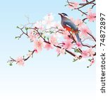 Blossoming Cherry Tree With...