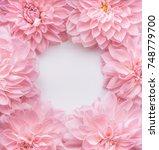 creative pastel pink flowers... | Shutterstock . vector #748779700