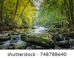 stream flowing through woods in ... | Shutterstock . vector #748788640