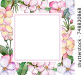 wildflower of apple flower... | Shutterstock . vector #748830868