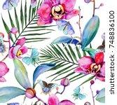wildflower orchid flower... | Shutterstock . vector #748836100
