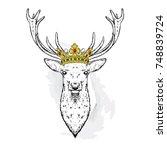 beautiful deer in the crown....   Shutterstock .eps vector #748839724