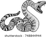 snake with open mouth. hand... | Shutterstock .eps vector #748844944