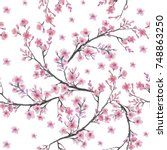 seamless pattern with branch of ... | Shutterstock . vector #748863250
