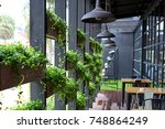 Eco architecture. Green cafe with hydroponic plants on the facade. Ecology and green living in city, urban environment concept. Modern building covered green plant. Abstract  background. - stock photo