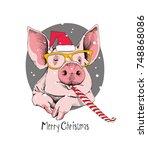 christmas card. portrait of the ... | Shutterstock .eps vector #748868086