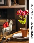 Small photo of Flower Pot Chocolate Fondant Cake with toy horse on the background