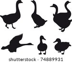 Duck And Goose Silhouette...