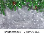 spruce new year branches with... | Shutterstock . vector #748909168