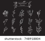 vector set of hand drawn wild... | Shutterstock .eps vector #748918804
